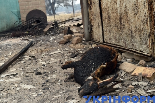 Fire-stricken Voronove town in Luhansk Region